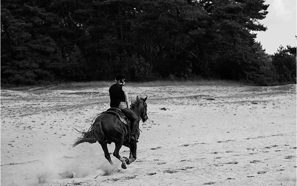 Buitenrit paardrijden The Mill Ranch zaterdag 27 september 2014